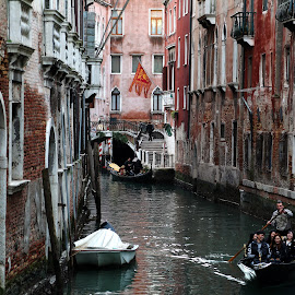 happy group in venice by Almas Bavcic - City,  Street & Park  Historic Districts