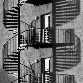 die Wendeltreppe by Roswitha Schlüter - Buildings & Architecture Architectural Detail (  )