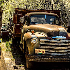 by Earl Heister - Transportation Automobiles