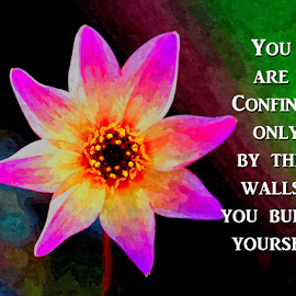 You are confined only by the walls you build yourself. by Dipali S - Typography Captioned Photos ( walls, font, confined, build, typography, photo, captioned, flower )
