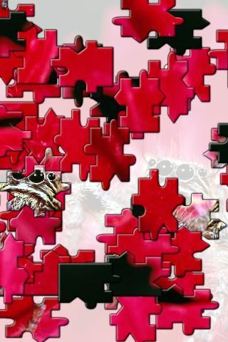 【免費解謎App】Grasshopper Jigsaw Puzzle-APP點子