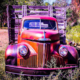 Retirement by Becca McKinnon - Transportation Automobiles ( studebaker, weeds, old truck, antique )