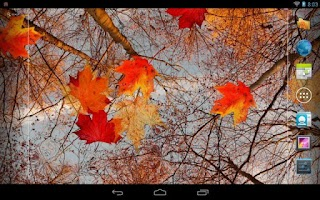 Screenshot of Autumn Maple Live Wallpaper
