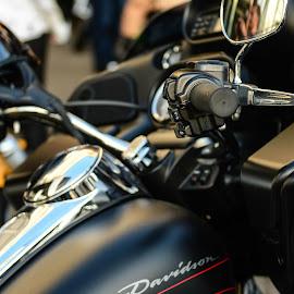 harley davidson by Ariel Jerard V. Arias II - Transportation Motorcycles