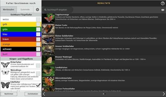 download online casino münzwert bestimmen