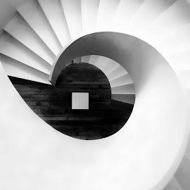 Vertigo by Antonio Amen - Buildings & Architecture Architectural Detail ( stairs, white, round, steps, spiral, vertigo )