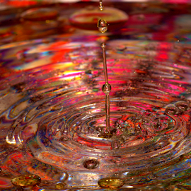 Follow the Leader by Janet Lyle - Abstract Water Drops & Splashes ( water, splash, colors, droplets )
