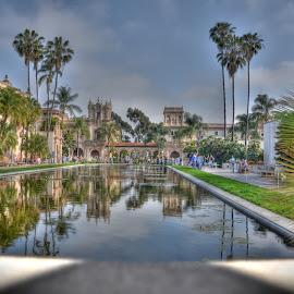 Balboa Park Pool by John Herold - City,  Street & Park  City Parks ( reflection, hdr, reflecting pool, palm trees, balboa park )