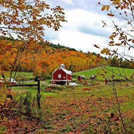 Vermont Farm by Christine Hanaford - Landscapes Mountains & Hills