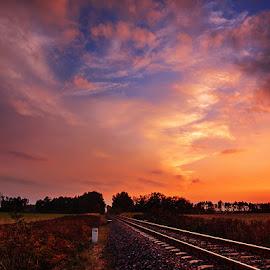 by Zsolt Zsigmond - Landscapes Sunsets & Sunrises ( clouds, sky, sunset, tracks, sun )
