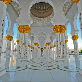 The path of Sheikh Zayed Mosque by João Ferreira - Buildings & Architecture Places of Worship ( sheikh zayed mosque abu dhabi )