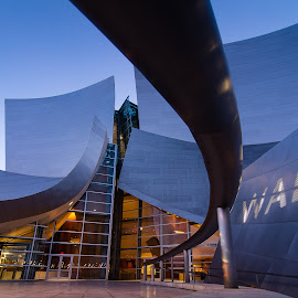 Walt Disney Concert Hall by Eric Frame - Buildings & Architecture Public & Historical ( disney concert los angeles la )