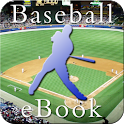 Baseball Season InstEbook icon