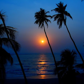 Sunset On Beach by Nikhil Jahagirdar - Landscapes Sunsets & Sunrises ( water, orange, coconut, colors, sea, beach, magnificent, of, nature, blue, sunset, on, trees, between, orange. color )