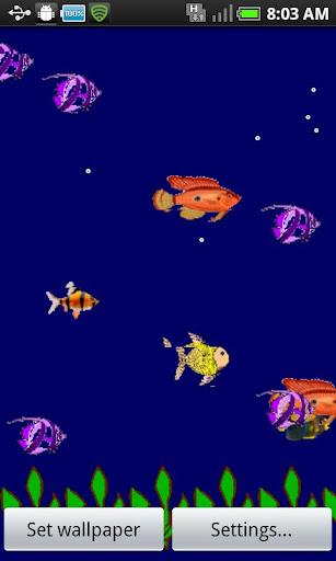 Easy Aquarium Live - Free