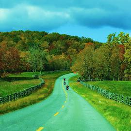 Bikers Paradise by Vijay Govender - Landscapes Travel ( blue ridge mountains, autumn, fall )