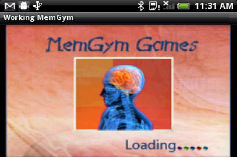 Working MemGym