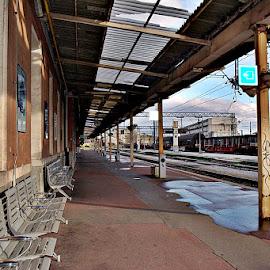 Na peronu by Jelena Puškarić - Transportation Trains (  )