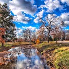 A Walk in the Park by Michael Buffington - City,  Street & Park  City Parks ( clouds, autumn, leaves, morning, rogers, arkansas )