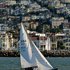 Sailing On San Fransisco Bay by Mary Motsay - City,  Street & Park  Vistas