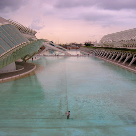 VALENCIA by Gianluca Presto - Buildings & Architecture Public & Historical ( modern, tourism, museum, valencia, architecture, travel, expo, spain, calatrava, science )