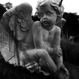 by Jessika Herrmann - Novices Only Objects & Still Life ( angel, statue, graveyard )