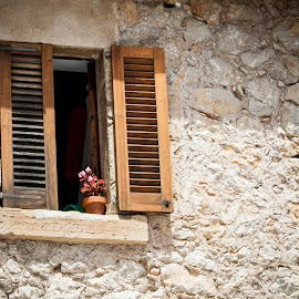 The flower pot by Werner Booysen - Buildings & Architecture Architectural Detail ( building, window, pollenca, mallorca, pot, flower, werner booysen )