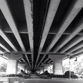 The underbelly of a flyover in Mumbai by Sarvesh Sathe - Buildings & Architecture Bridges & Suspended Structures