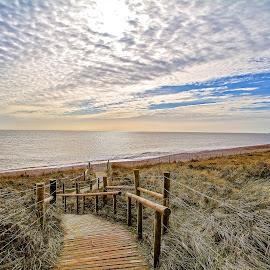by Chris Koven - Landscapes Beaches