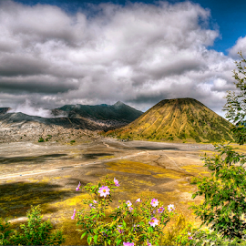 Mt. Bromo by Richard Idea - Landscapes Mountains & Hills