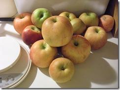 Applesauce 001