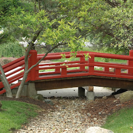 Shiojiri garden, Mishawaka, IN by Lori Rider - City,  Street & Park  City Parks ( indiana, red, park, green, bridge, japanese )