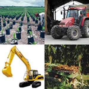 Oil Palm Resources Calculator