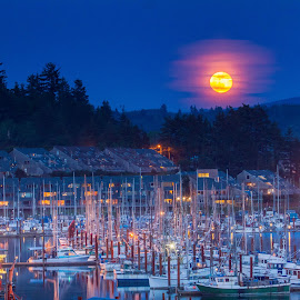 Moonrise by Christian Flores-Muñoz - City,  Street & Park  Vistas ( moon, harbor, night, marina, fishing, vessels )