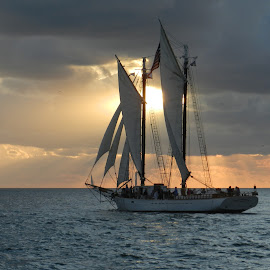 Sailing into the Evening by Lorraine D.  Heaney - Transportation Boats (  )