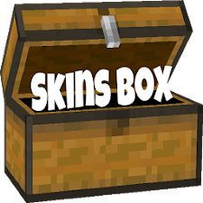 Mcpe Skin Download Box