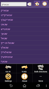 Georgian Yiddish dictionary - screenshot