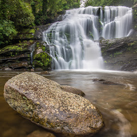 by Joshua Williams - Landscapes Forests ( water, waterfall, rock, landscape, foreground, river )