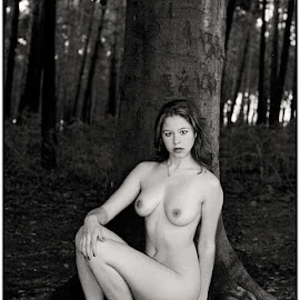 Liefdesboom  by Etienne Chalmet - Nudes & Boudoir Artistic Nude ( erotic, girls, nude, tree, outdoor )