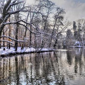 Maksimir... winter view by Zeljko Kliska - Landscapes Forests ( HDR, Landscapes, , snow, winter, cold )