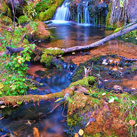 Double Falls by Brian Kerls - Landscapes Waterscapes ( calm, stream, silky water, waterfall, plants, solitude, blur, yellow, landscape, usa, hiking, alpine, ben tyler creek, tranquil, blurred water, rushing water, nature, camping, pool, autumn, flowing water, creek, light, pond, water, bailey colorado, green, colors, trekking, cliff, colorado, lake, conservation;, environmental, backpacking, wilderness, seasons, serene, cascade, outdoors, falls, fall, western, natural, hike, outside, river )