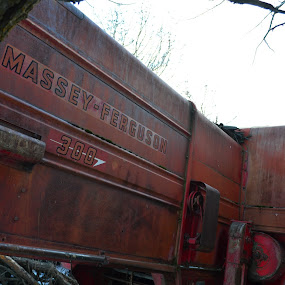 Big Red by Selah Madland - Transportation Other ( old, red, big, tractor, farming )