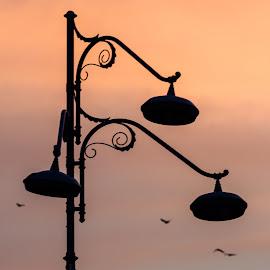 dawn  by Mihai Popescu - City,  Street & Park  Skylines