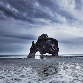 Hvitserkur Rock by Fokion Zissiadis - Landscapes Caves & Formations