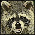 Raccoon Sound Effects icon