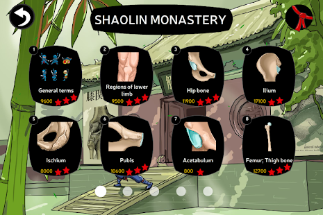 Anatomy Ninja Lower Limb - screenshot
