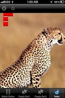 Screenshot of Wonder Animals Zoo Free Game