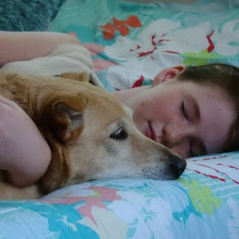 Sweet Dreams by William Carson - People Family ( friends, family, carson, sleep, dog,  )