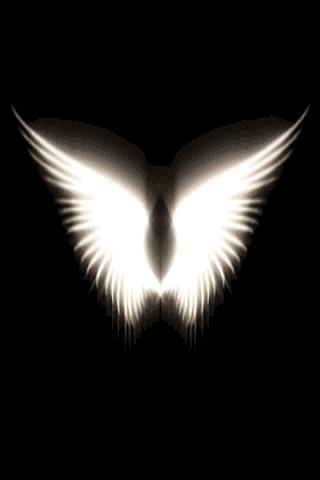 Wings Live Wallpaper