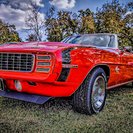 Camero SS 350 by Ron Meyers - Transportation Automobiles
